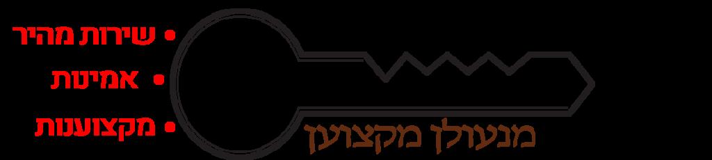 לוגו - דוד מנעולן